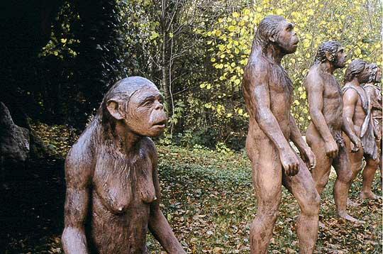 poils hommes préhistoriques
