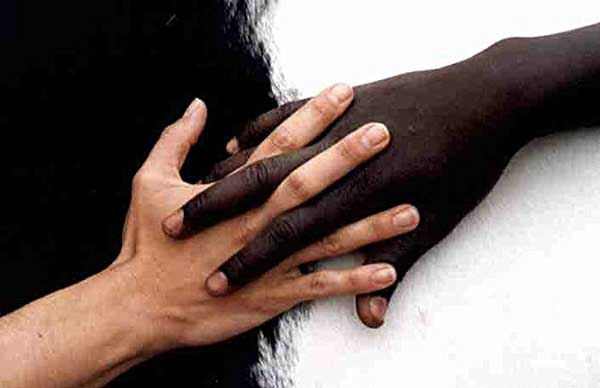 Différents types de peaux