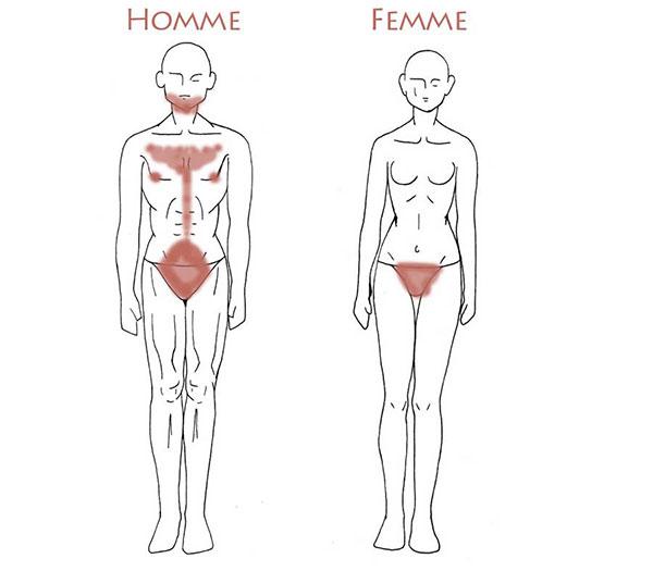 Poils chez les hommes et les femmes