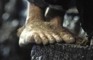 pied Hobbit poilu